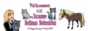 Susanne Hellman Holmström bloggar -300x108